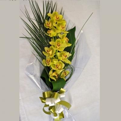 Vara orquídea